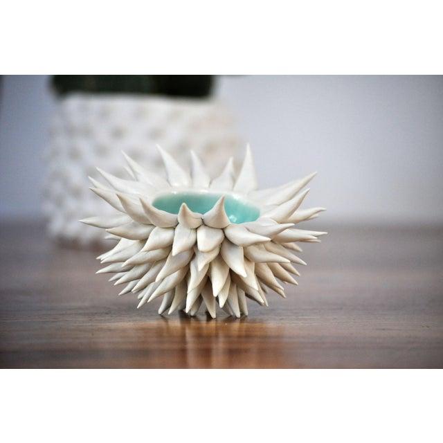 Micro Urchin Bowl in Copper Blue - Image 4 of 6
