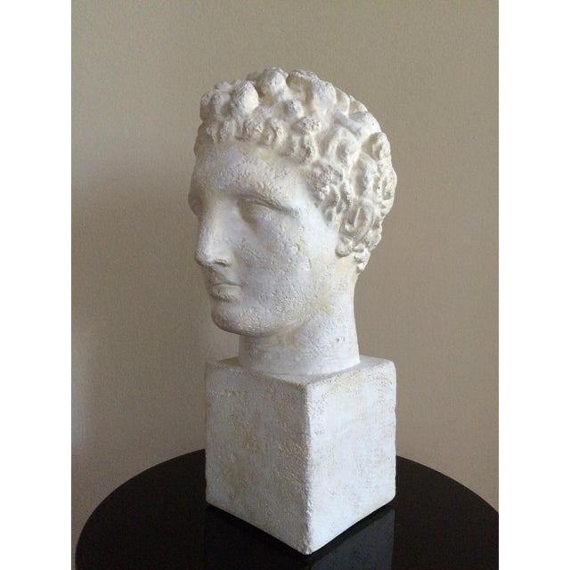 White Lifesize Plaster Bust of Hermes For Sale - Image 8 of 11