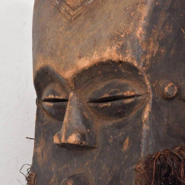 Vintage Lega Mask Bearded Bwami Society For Sale - Image 4 of 7