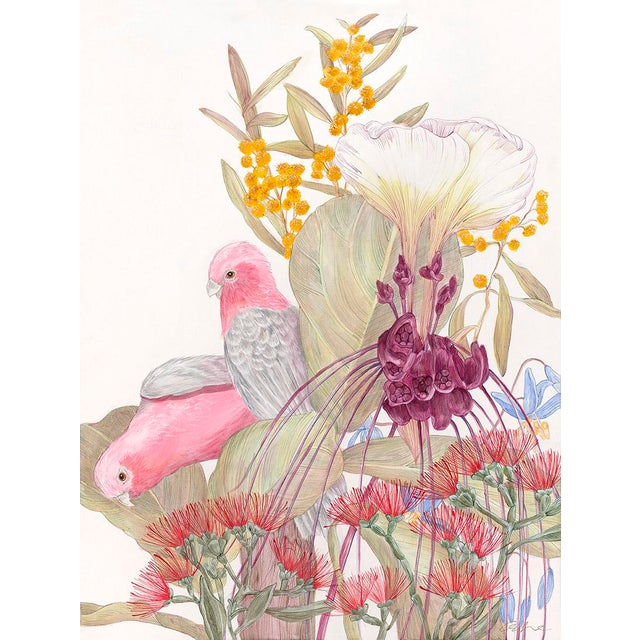 Asian Allison Cosmos Galahs and Inflorescence Contemporary Painting For Sale - Image 3 of 3