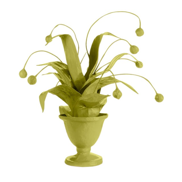 Contemporary Stray Dog Designs for Chairish Crunchberry Faux Plant, Parakeet Green For Sale - Image 3 of 3
