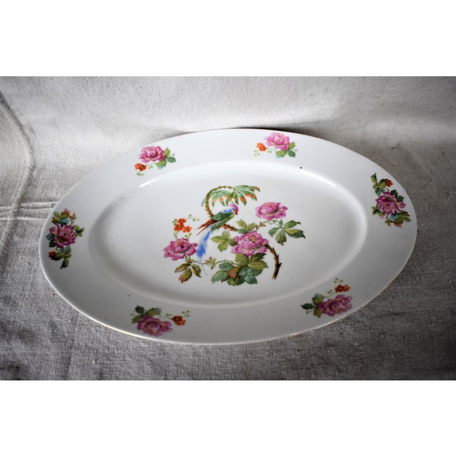 1930s Vintage Victoria China Parrot Platter For Sale - Image 4 of 7