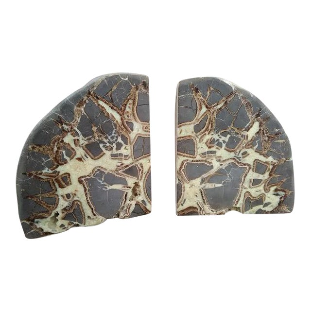 Septarian Concretion Bookends - a Pair For Sale