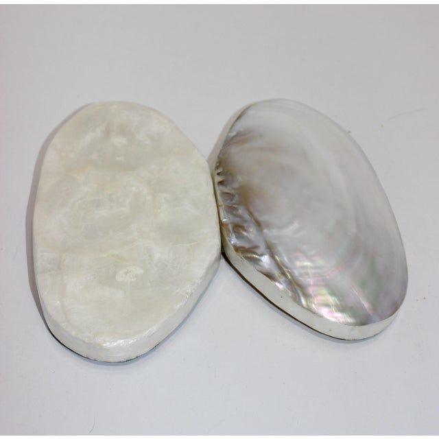 Pearlized Shell and Capiz Shell Trinket Box Velvet Lining For Sale - Image 10 of 13