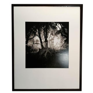 Large Vintage Black and White Photo - Signed, Framed For Sale