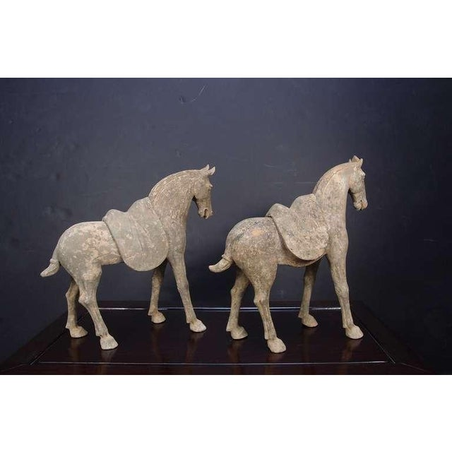15th Century & Earlier Pair Early Tang Dynasty Grey Pottery Striding Horses with Removable Saddles For Sale - Image 5 of 8