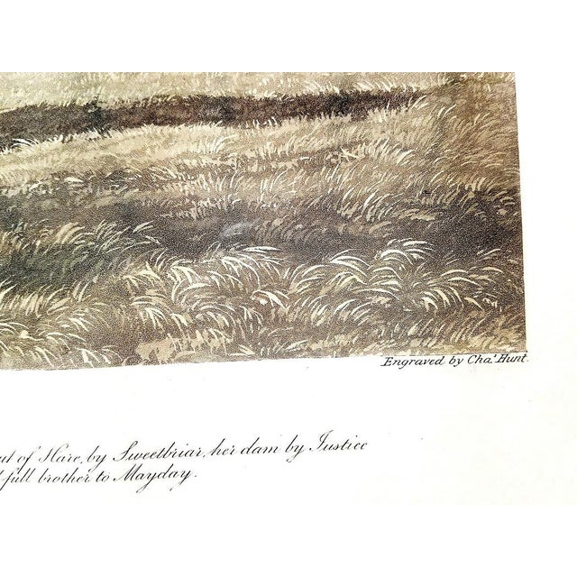 19th C. Engraving of Phosphorus by Jf Herring Snr For Sale In Dallas - Image 6 of 10