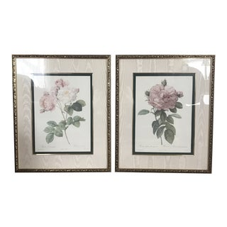 1990s Pierre-Joseph Redoute Rose Prints - A Pair For Sale