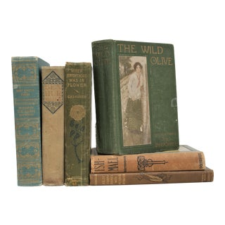 Vintage Shabby Book Collection - Set of 6 For Sale