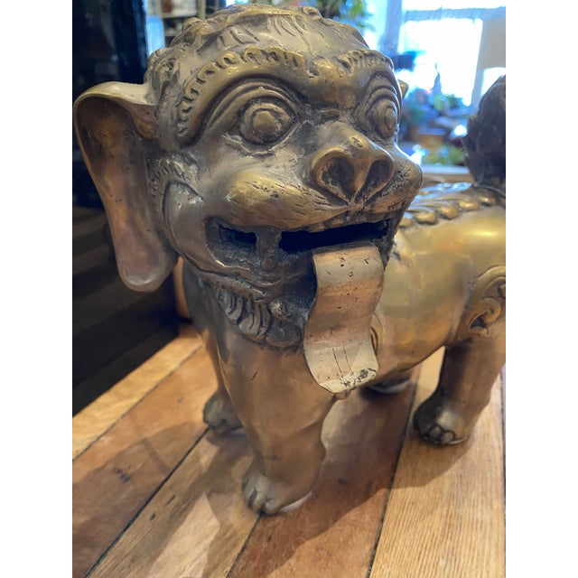 A great pair of large, brass Foo Lion dogs sculptures/decorative objects, circa 20th century. Beautiful detail all around...