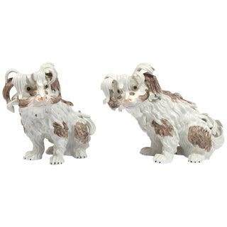 Pair of Dresden Porcelain Bolognese Dogs For Sale