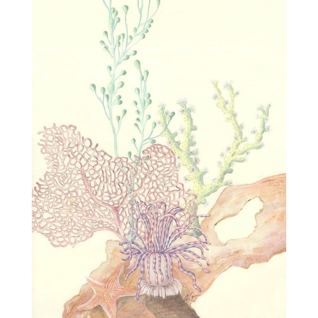This magnificent coral reef triptych is perfect for your coastal art collection. These 3 underwater paintings are...
