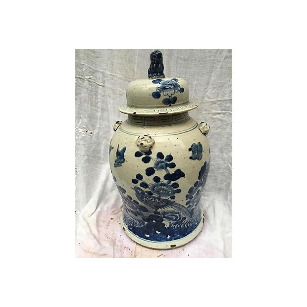 Blue & White Ginger Jar With Foo Dog Lid - Image 3 of 8