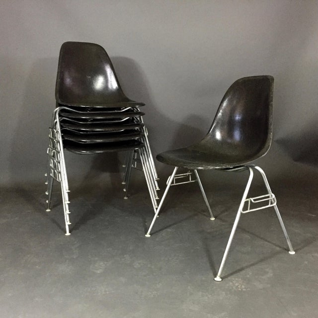 Six (6) Charles and Ray Eames Fiberglass Shell Chairs, Stacking Base For Sale - Image 10 of 10