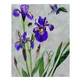 Premium Giclee Print Of Hummingbird & Iris For Sale
