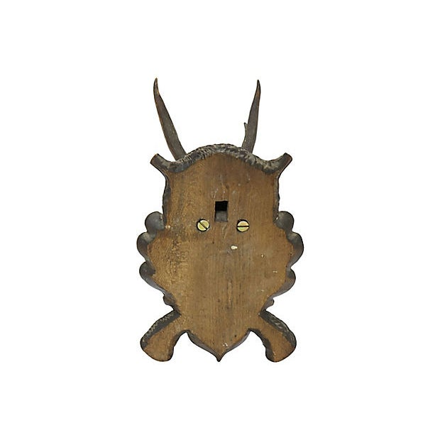 Antique Black Forest mounted horns. Predrilled hole on back for mounting, hardware not included. No makers mark. Light wear.