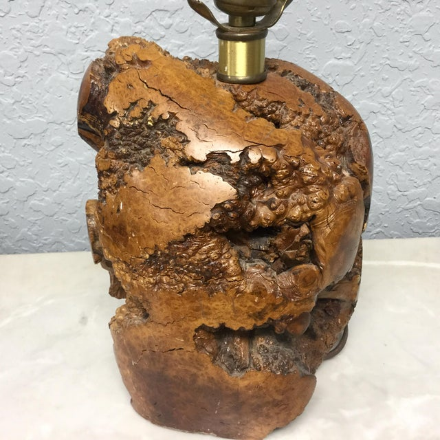 Mid-Century Naturalistic Burl Wood Lamp For Sale - Image 4 of 10