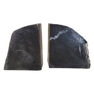 Petrified Wood Bookends For Sale