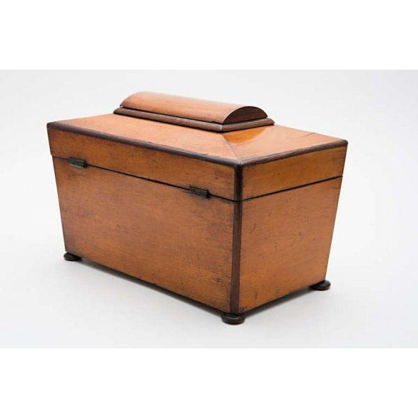 19th Century Satinwood Teacaddy For Sale In Nashville - Image 6 of 11