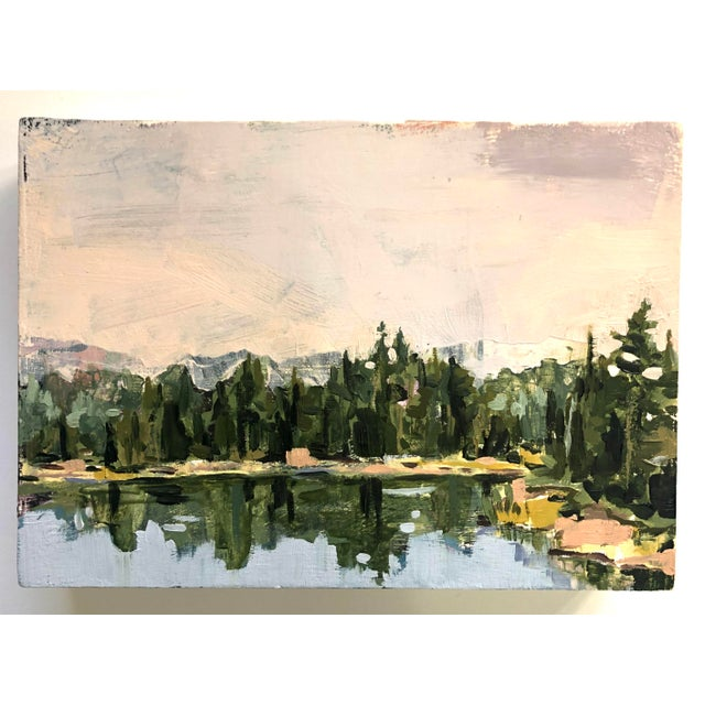 Lindsey Luna Tucker paints to echo the experience of what it feels like to be in nature. She wants to capture the awe,...