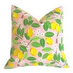 Pink Lemonade Outdoor Pillow Cover 18x18
