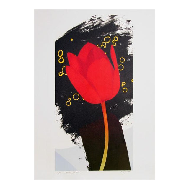 Michael Knigin, Perfect Witness, Lithograph For Sale