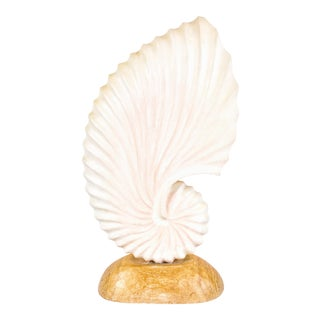 Spiral Nautilus Sculptural Plaster Shell Aft John Dickinson For Sale