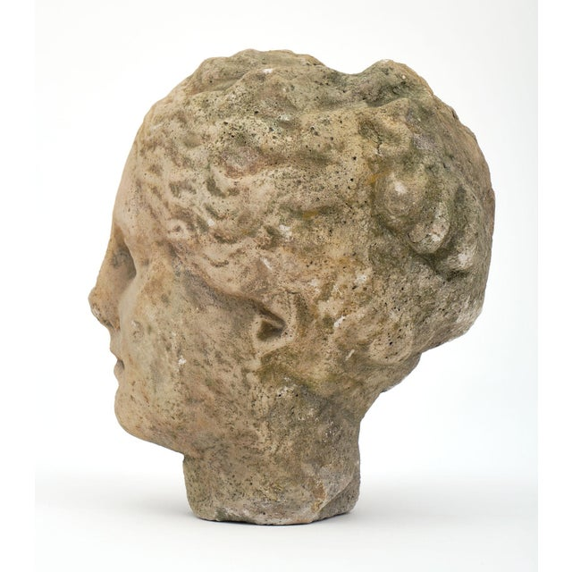 Antique Stone Bust of Greek Goddess Athena For Sale - Image 9 of 10