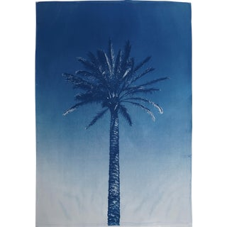 Nile River Palm / Original Cyanotype Print on Watercolor Paper / 100x70cm / Limited Edition / Handprinted With Natural Sunlight For Sale