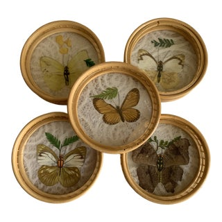 Midcentury Butterfly Bamboo Coasters, Set of Five For Sale