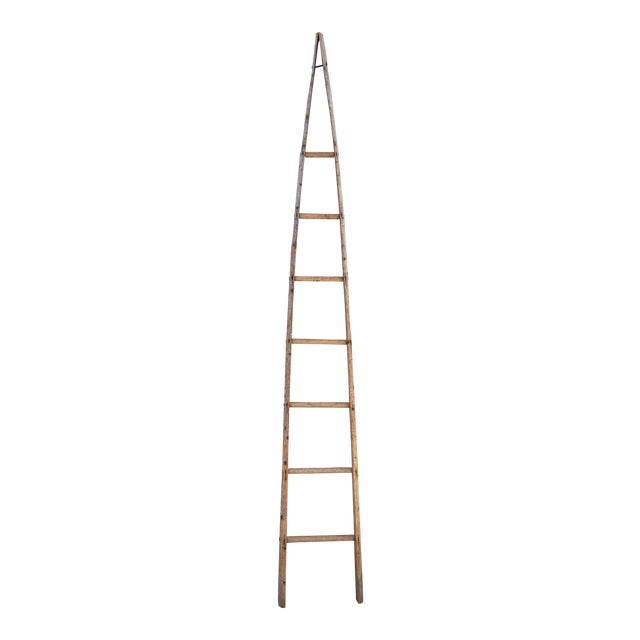 Late 19th Century Vintage Orchard Ladder