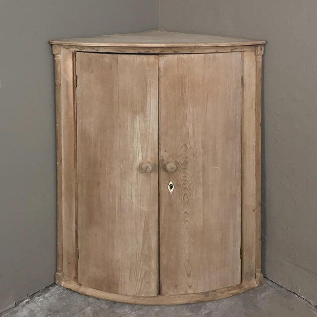 19th Century Swedish Stripped Pine Corner Cabinet For Sale - Image 10 of 12
