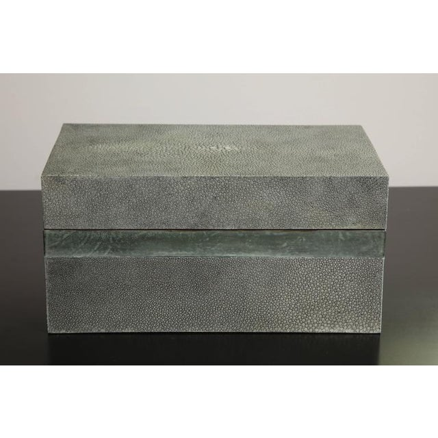 Animal Skin Custom Shagreen Treasure Box with Parchment Trim For Sale - Image 7 of 7