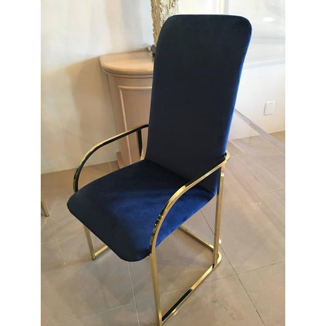 DIA Brass Navy Velvet Dining Arm Chairs - Set of 12 For Sale - Image 5 of 9