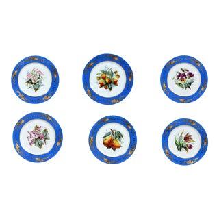 Paris Porcelain Botanical & Fruit-Decorated Set of Six Plates For Sale