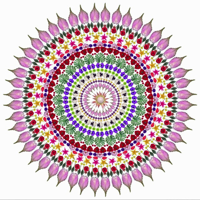 "Red ""Flower Mandala"" Print For Sale - Image 8 of 9"