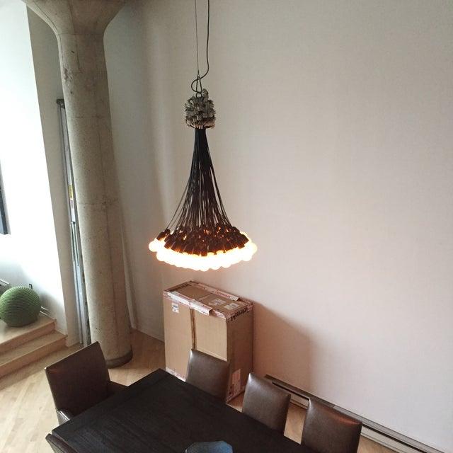 85 Lamps Chandelier By Dutch Designer Droog Image 3 Of