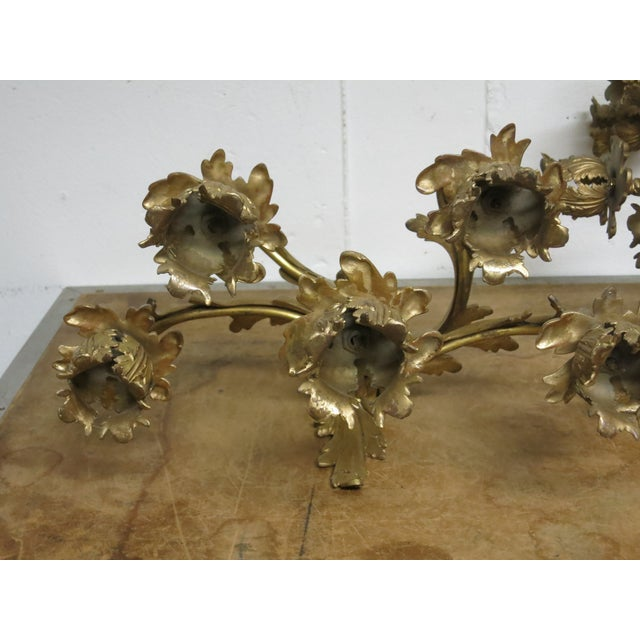 Early 20th Century Gilt French Sconces Louis the XV Style - a Pair For Sale In New York - Image 6 of 8