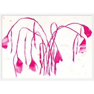 "Large ""Pink Daffodil"" Print by Kate Roebuck, 45"" X 32"" For Sale"