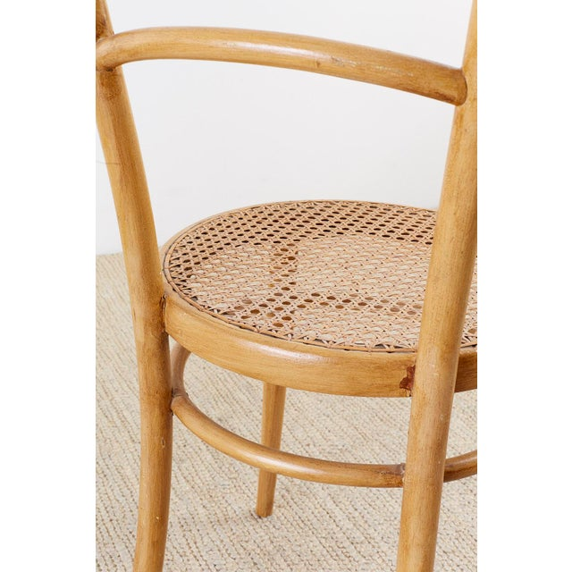 Beige Pair of J. And J. Kohn Austrian Bentwood and Cane Chairs For Sale - Image 8 of 13