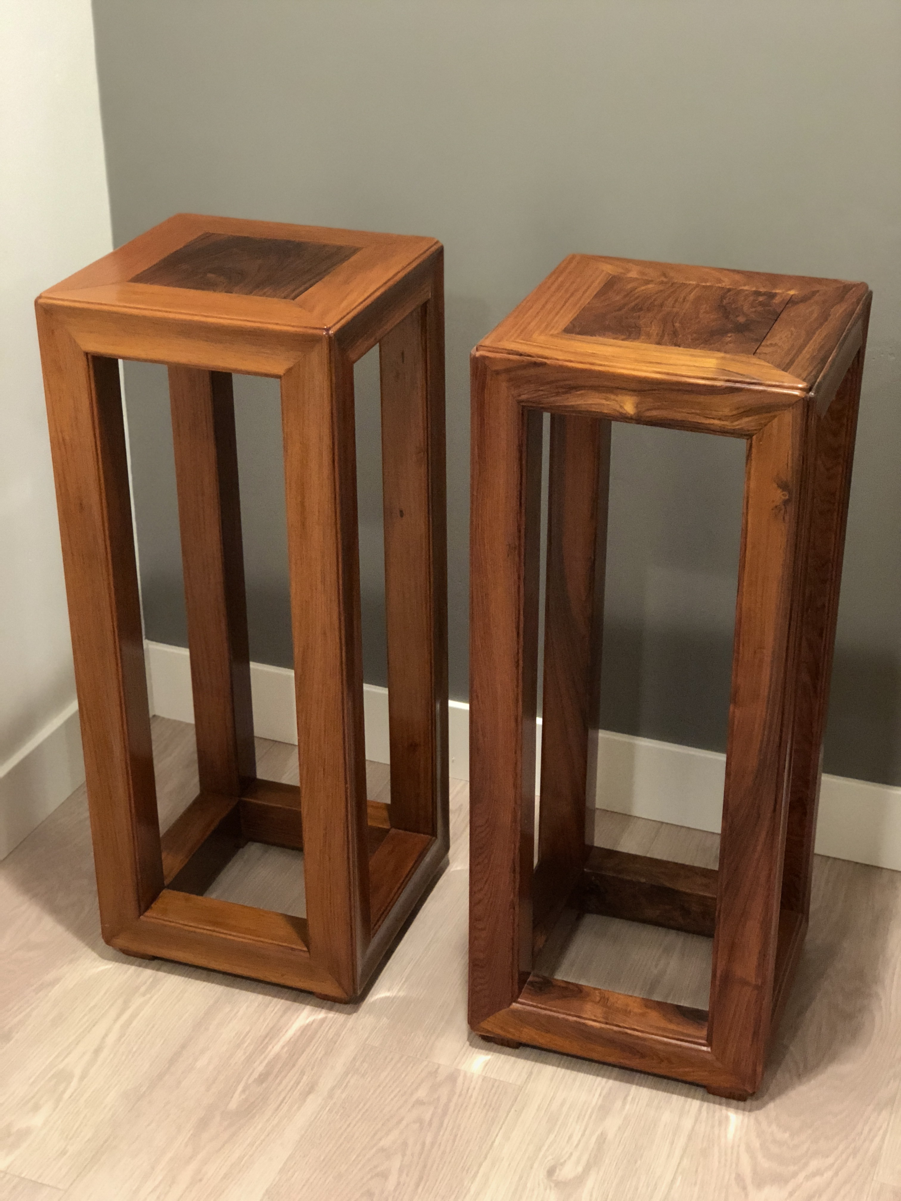 Awesome Chinese Huanghuali Rosewood Plant A Pair Image Of With