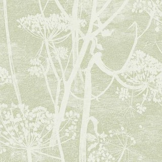 Cole & Son Cow Parsley Wallpaper Roll - Olive For Sale