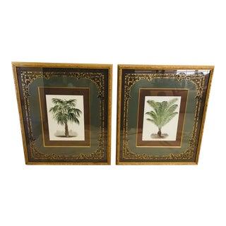 Vintage John Richard Framed/Matted Botanical Prints - Set of 2 For Sale