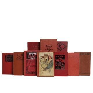 Accented Vintage Novels, S/20 For Sale