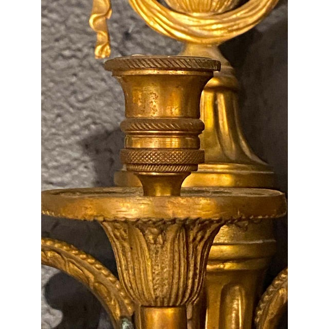 Adams Style Five Arm Tassel Decorated Dore Bronze Wall Candelabras - a Pair For Sale - Image 10 of 13
