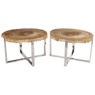 Pair of Petrified Wood Side Tables on Chrome Bases