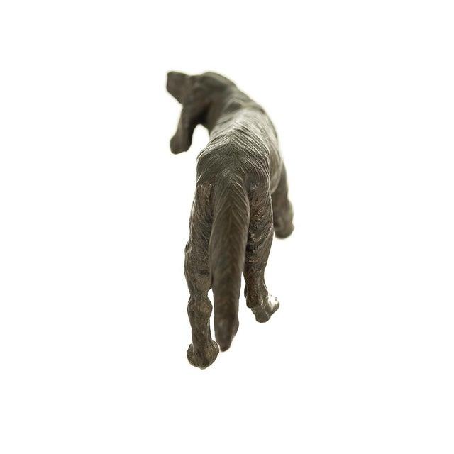 Vintage Austrian Bronze Setter Dog Figurine For Sale - Image 5 of 9