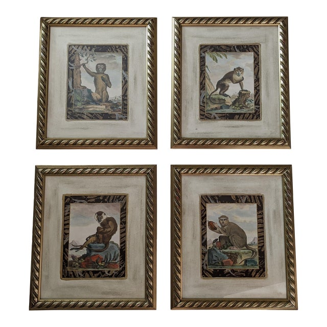 Late 20th Century Hand-Colored Engravings of Monkeys After G. Buffon, Framed - Set of 4 For Sale