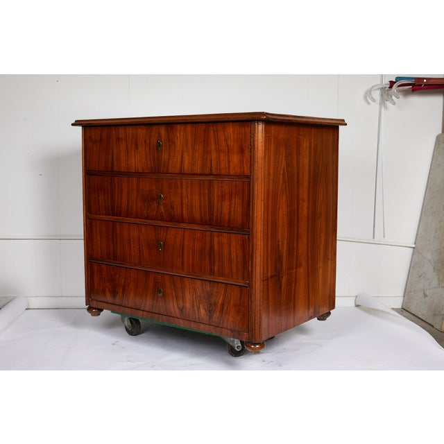 Mid 19th Century Large 19th Century Biedermeier Commode of Rosewood For Sale - Image 5 of 13