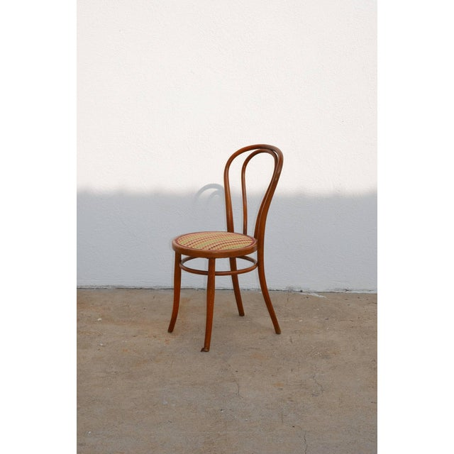 Set of Four Large Slender Bentwood Dining Set by Thonet For Sale In Los Angeles - Image 6 of 9